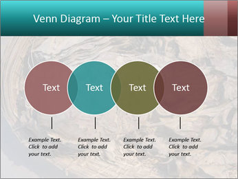 0000071729 PowerPoint Template - Slide 32
