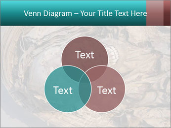 0000071729 PowerPoint Templates - Slide 33
