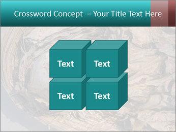 0000071729 PowerPoint Templates - Slide 39