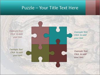 0000071729 PowerPoint Templates - Slide 43
