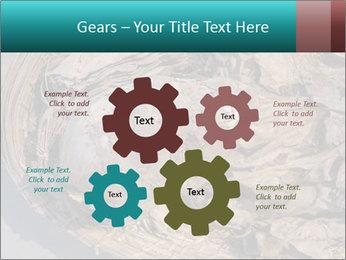 0000071729 PowerPoint Template - Slide 47