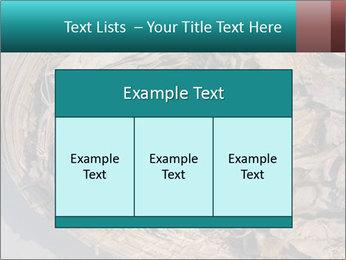 0000071729 PowerPoint Templates - Slide 59
