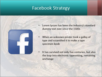 0000071729 PowerPoint Templates - Slide 6
