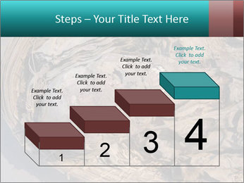 0000071729 PowerPoint Template - Slide 64