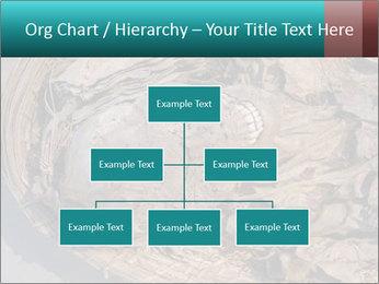0000071729 PowerPoint Templates - Slide 66
