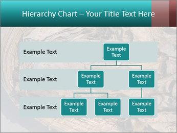 0000071729 PowerPoint Templates - Slide 67