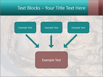 0000071729 PowerPoint Templates - Slide 70