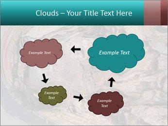 0000071729 PowerPoint Templates - Slide 72