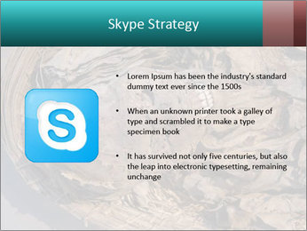 0000071729 PowerPoint Template - Slide 8