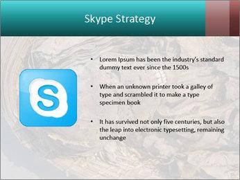 0000071729 PowerPoint Templates - Slide 8