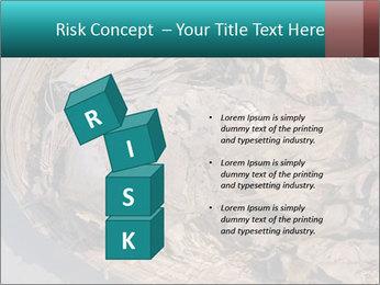 0000071729 PowerPoint Templates - Slide 81