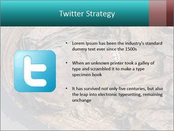 0000071729 PowerPoint Templates - Slide 9