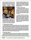 0000071732 Word Templates - Page 4