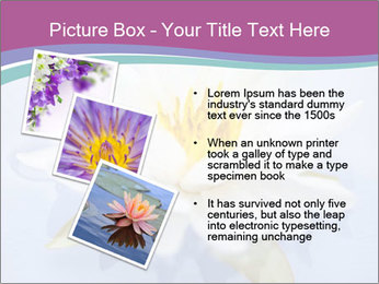 0000071734 PowerPoint Template - Slide 17