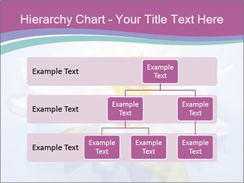 0000071734 PowerPoint Template - Slide 67