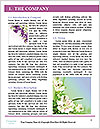 0000071734 Word Template - Page 3