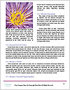 0000071734 Word Template - Page 4
