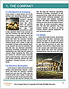 0000071735 Word Template - Page 3