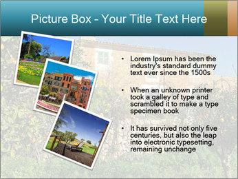 0000071736 PowerPoint Templates - Slide 17