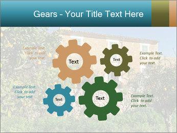 0000071736 PowerPoint Templates - Slide 47