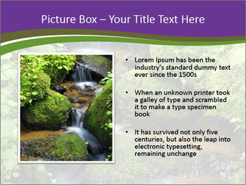 0000071752 PowerPoint Templates - Slide 13