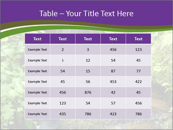 0000071752 PowerPoint Templates - Slide 55
