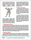 0000071757 Word Templates - Page 4