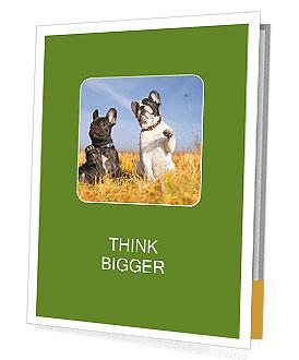 0000071761 Presentation Folder