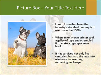 0000071761 PowerPoint Template - Slide 13