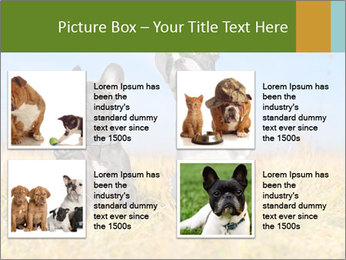 0000071761 PowerPoint Template - Slide 14
