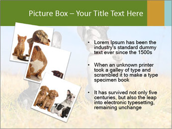 0000071761 PowerPoint Template - Slide 17