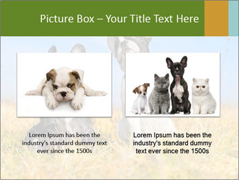 0000071761 PowerPoint Template - Slide 18