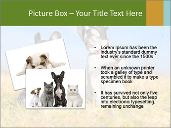 0000071761 PowerPoint Template - Slide 20