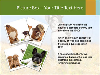 0000071761 PowerPoint Template - Slide 23