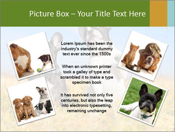 0000071761 PowerPoint Template - Slide 24