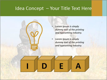 0000071761 PowerPoint Template - Slide 80