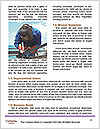 0000071763 Word Templates - Page 4