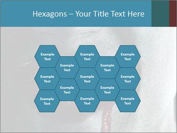 0000071767 PowerPoint Templates - Slide 44