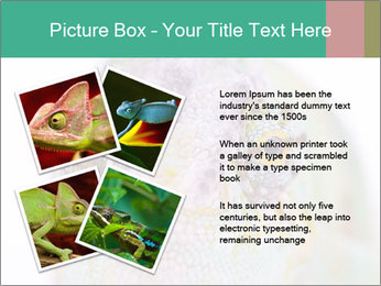 0000071771 PowerPoint Templates - Slide 23