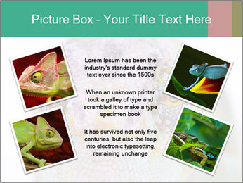 0000071771 PowerPoint Templates - Slide 24