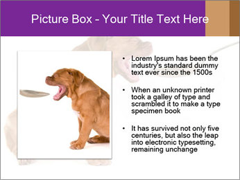 0000071773 PowerPoint Templates - Slide 13