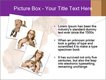 0000071773 PowerPoint Templates - Slide 17