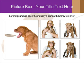 0000071773 PowerPoint Templates - Slide 19