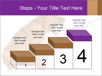 0000071773 PowerPoint Templates - Slide 64