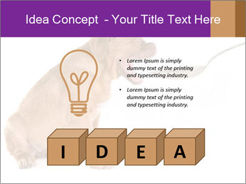 0000071773 PowerPoint Templates - Slide 80