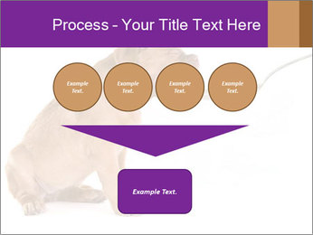 0000071773 PowerPoint Templates - Slide 93