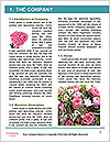 0000071776 Word Templates - Page 3