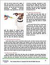 0000071798 Word Template - Page 4
