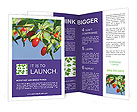 0000071799 Brochure Templates