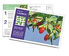 0000071799 Postcard Templates